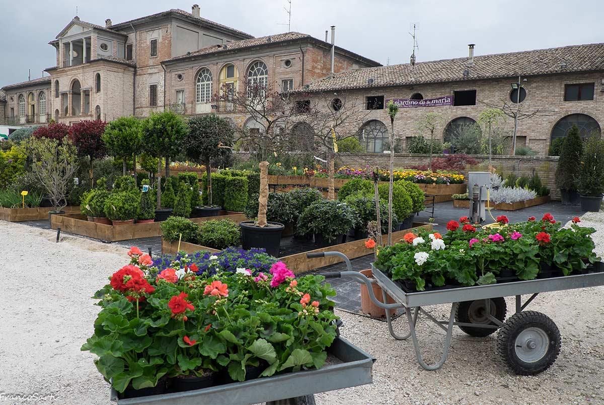 giardinaggio-piante-da-esterni-1